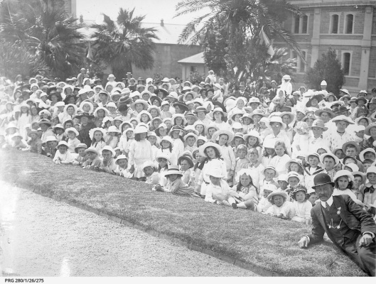Christmas tree Adelaide 1919