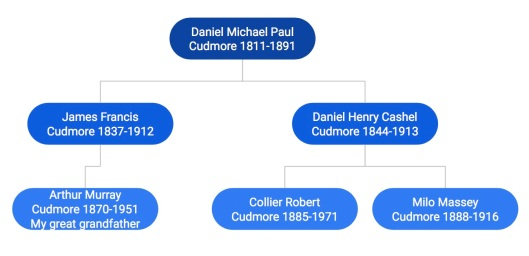 Collier Cudmore tree