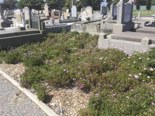 Footscray cemetery