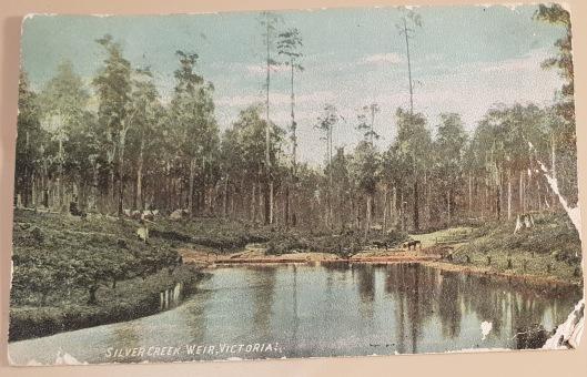postcard 1 picture