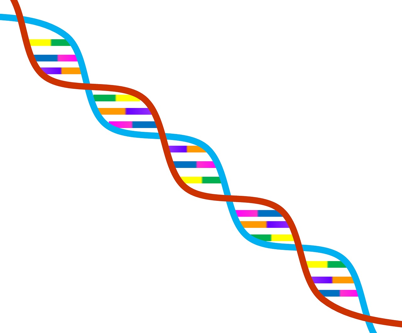 dna-image from Pixabay free to reuse