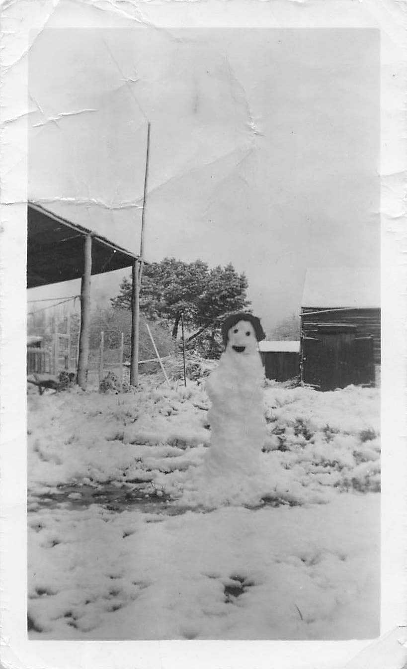 Ballarat snowman back yard 1949