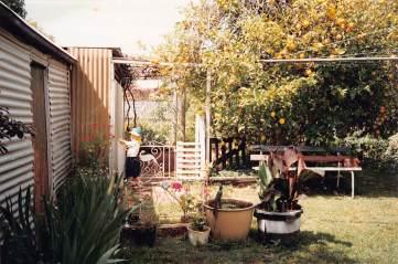 Hovell Street Peter back garden