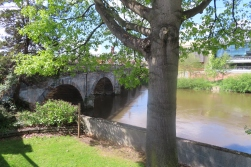 20190511 Shrewsbury river 050102_IMG_3424