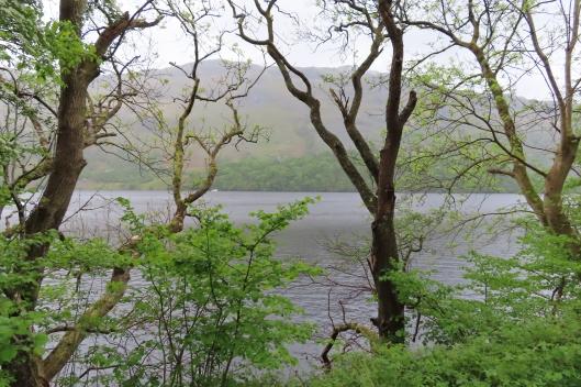 20190518 Loch Lomond 114328_IMG_4959