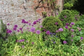 20190521 Kelmarsh Hall gardens 130636_IMG_5275