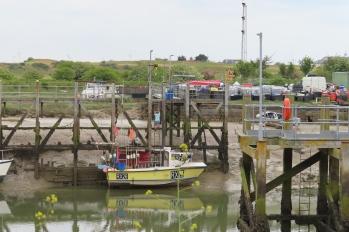 20190525 Rye Harbour 105106_IMG_5936