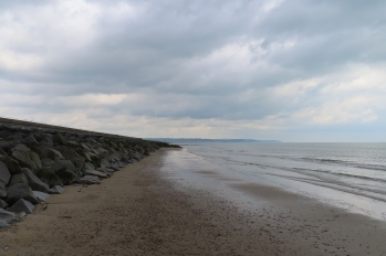 20190525 sea wall 120943_IMG_5974