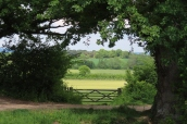20190525 Sissinghurst Kent countryside 151952_IMG_6105