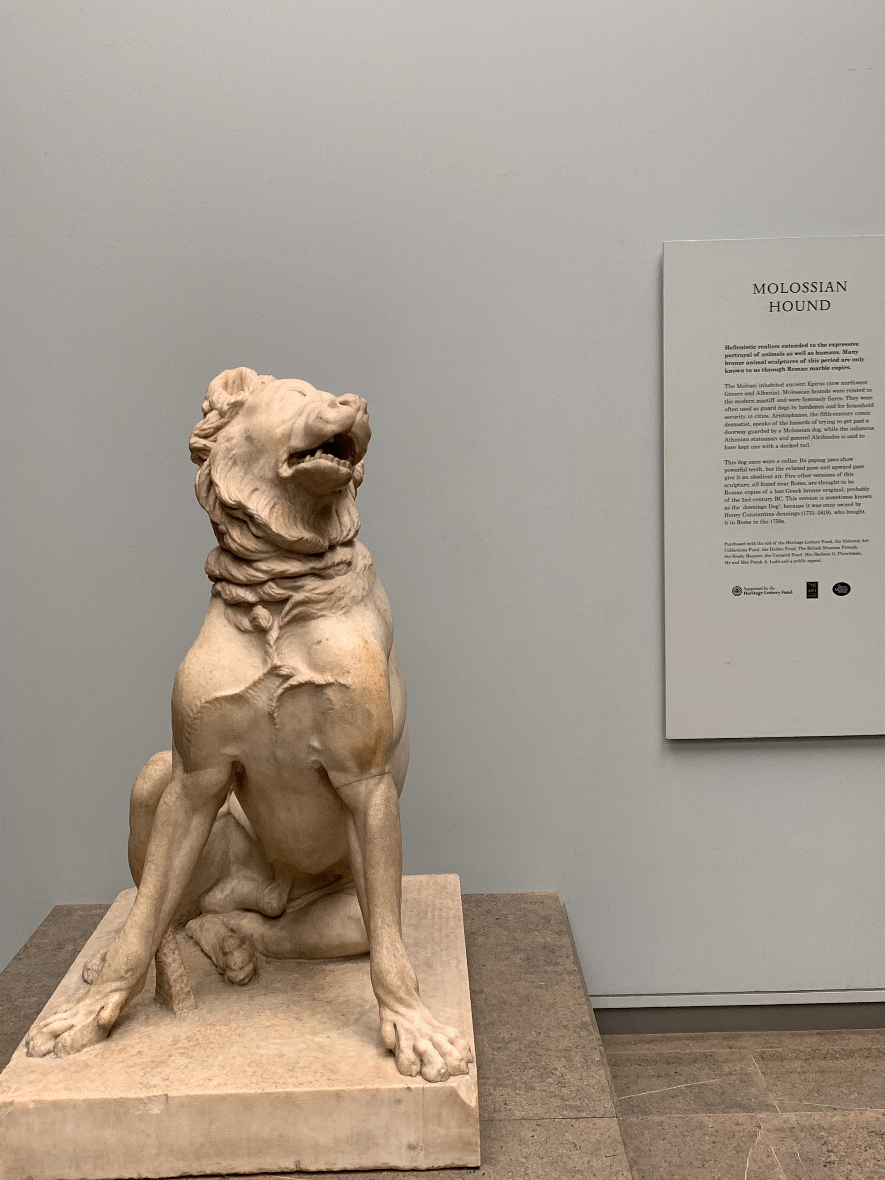 20190528 British Museum dog IMG_5127